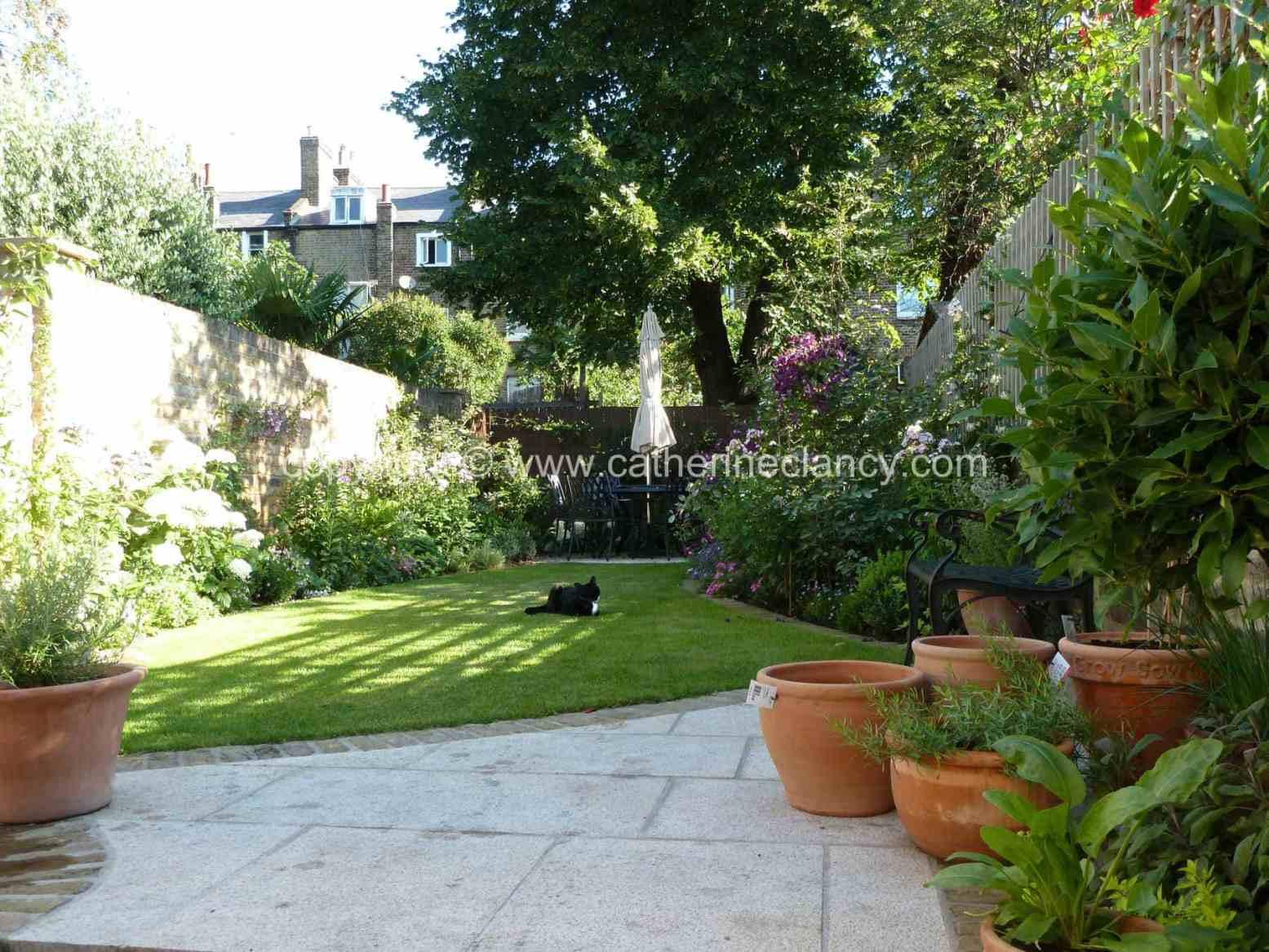 victorian-north-facing-garden-1