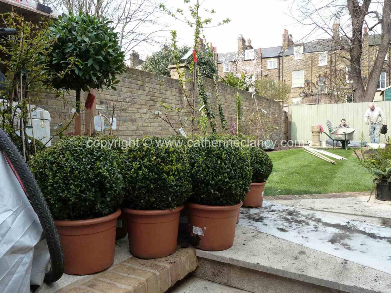 victorian-north-facing-garden-14