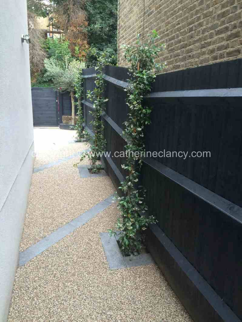contemporary-front-garden-6