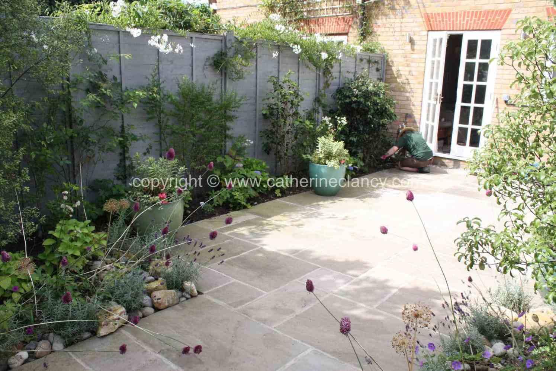 peckham-blue-garden-5