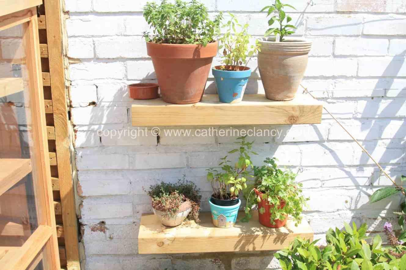 tiny-edible-garden-4