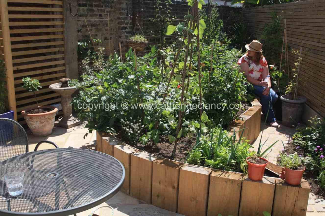 tiny-edible-garden-5