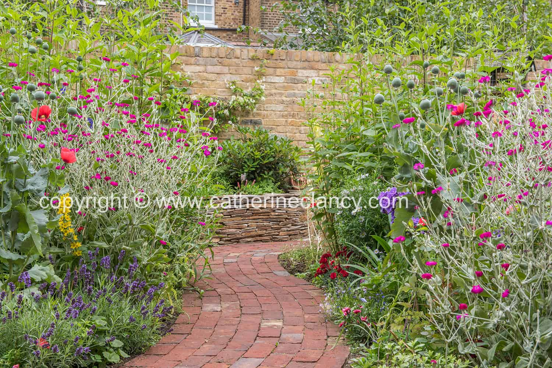 blackheath natural flower garden (24)