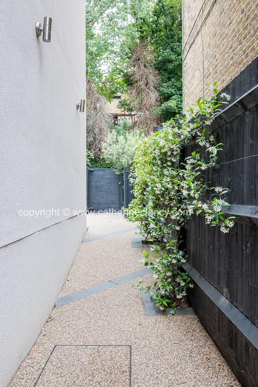 contemporary blackheath front garden 5