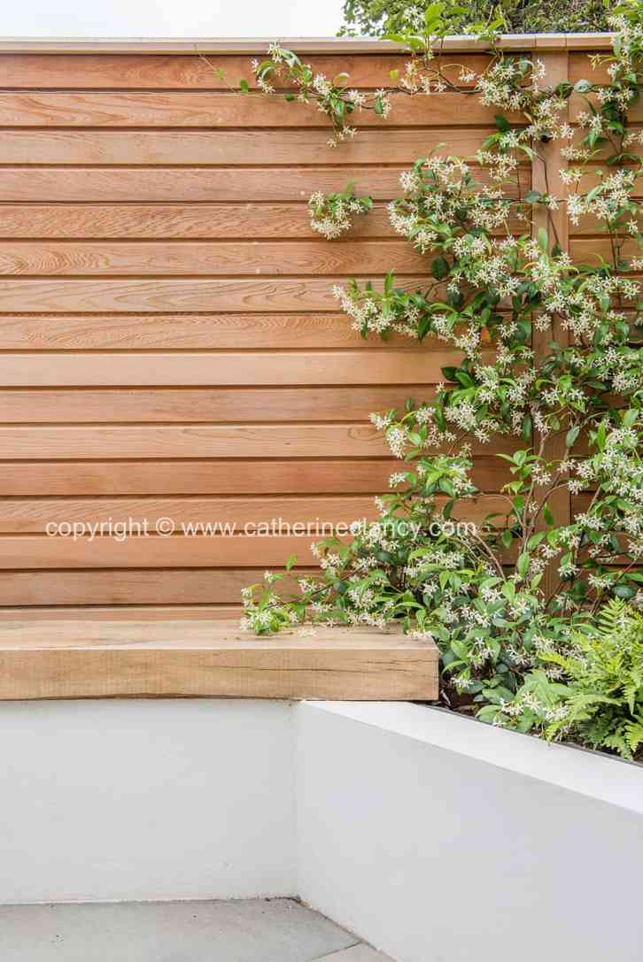 slatted cedar fence and jasmine
