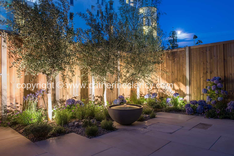 garden lit at night