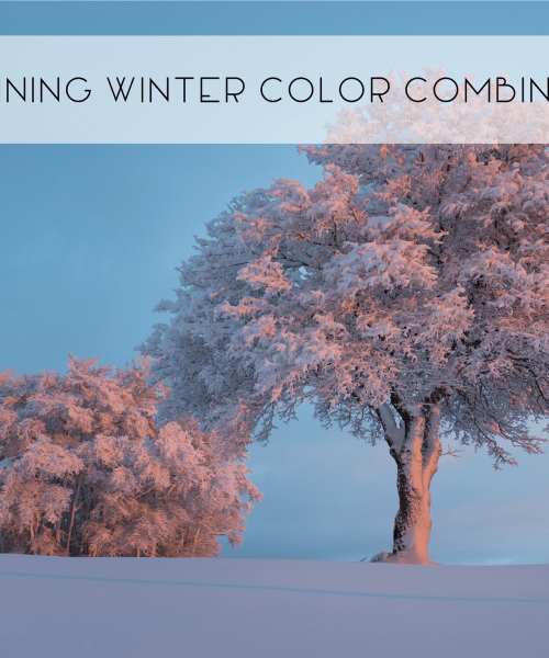 Interior Design Color Ideas: Winter Combinations