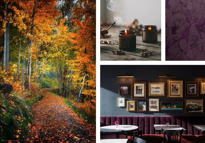 Autumn Color Inspiration - Catherine French Design