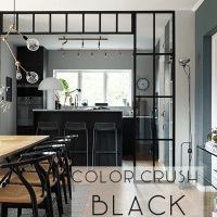 Color Crush: Black
