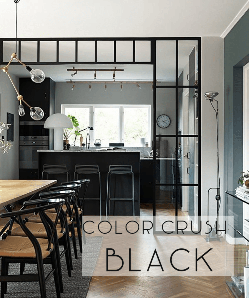 Catherine French Design - Color Crush: Black