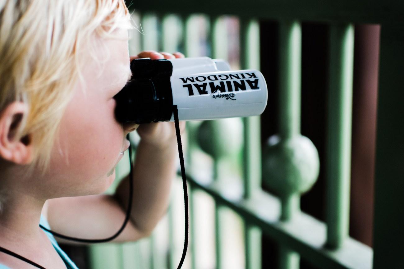 little boy looking through binoculars with teddy bear disney animal kingdom lodge {san diego lifestyle newborn baby child family photographer}