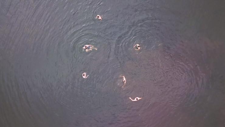 Groomsman Swim