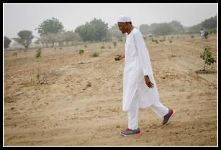President Buhari's photo from Twitter