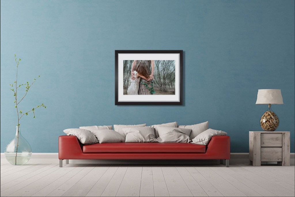 Framed demo limited edition fine art print by Montreal photographer Catherine Rondeau