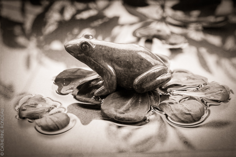 Figurine if a frog sitting on lettuce leaves in a water bassin.