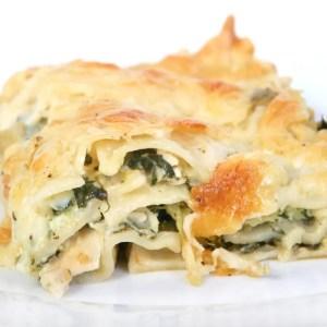 home delivered meals - chicken lasagne