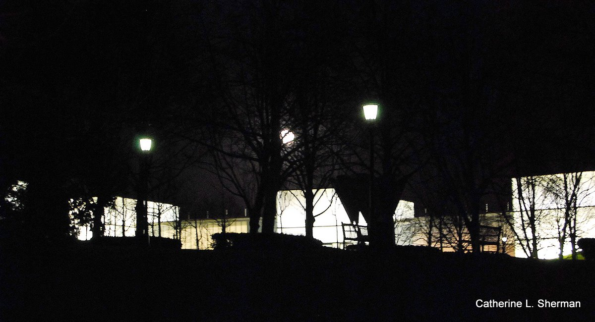 The full Moon adorned the glowing Bloch Building on Saturday.  You can see the moon in the center between the trees.