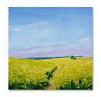 Oilseed Rape at Hillesden ll Catherine Winget oil on canvas landscape painting art artist oil painting North Bucks