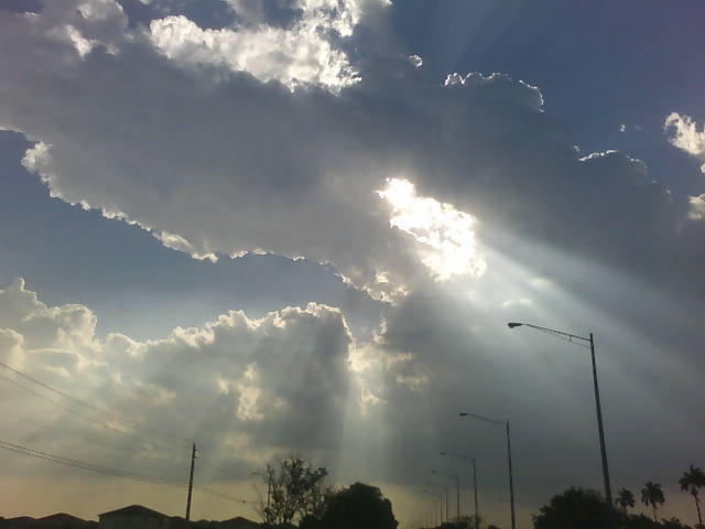 090411_sunlight-1