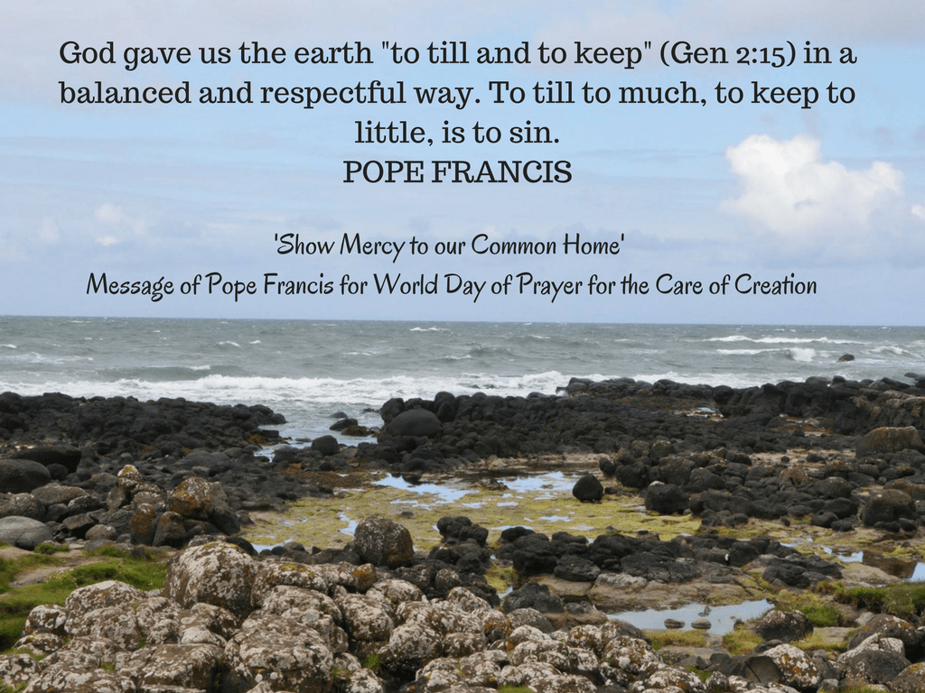 Pope Francis issues message for World Day of Prayer for the Care of All  Creation: Show Mercy to Our Common Home – Catholic News