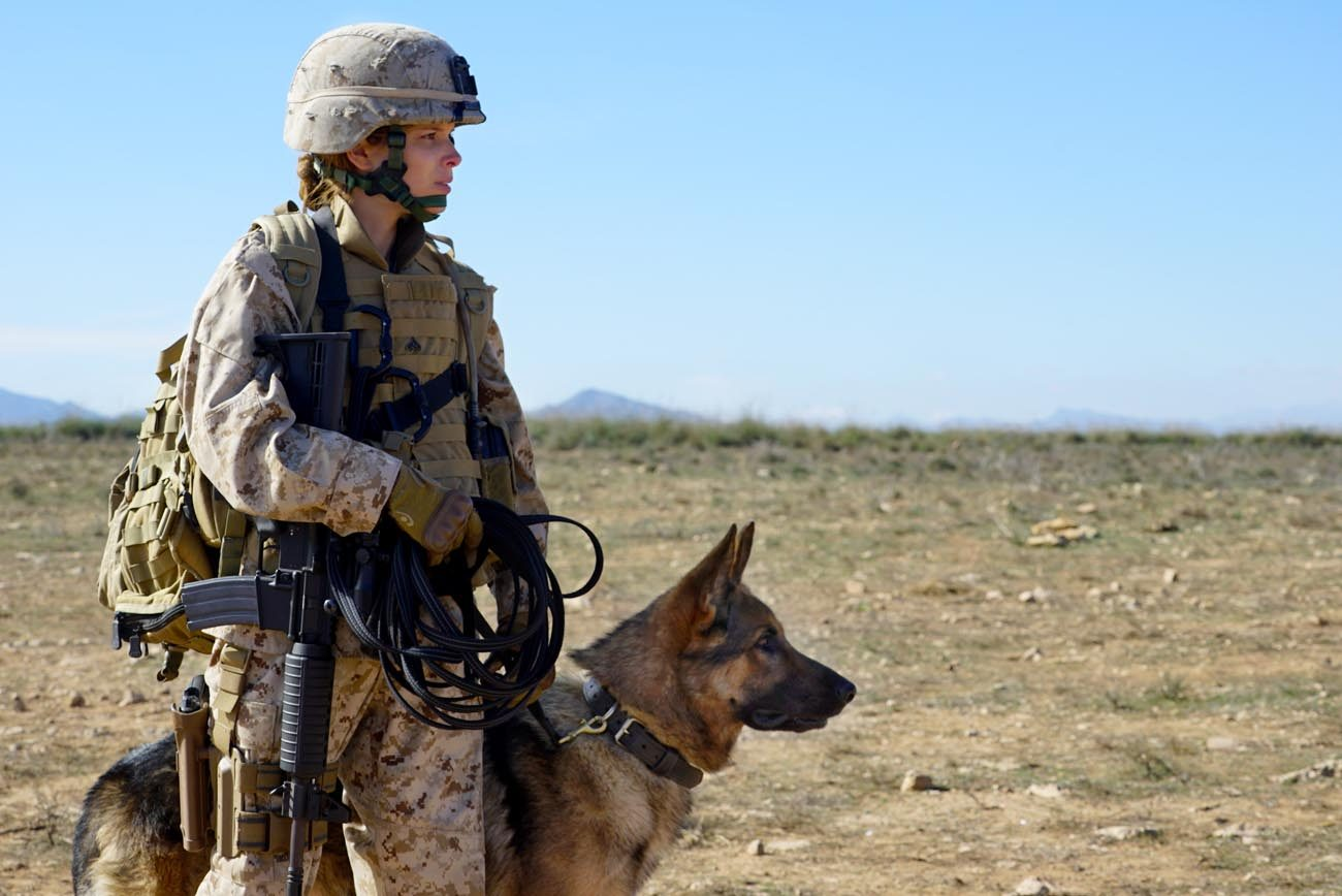 Image result for Megan Leavey Movie