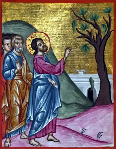 jesus-and-the-fig-tree