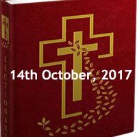 Saturday of the Twenty-seventh Week in Ordinary Time - Saturday Gospel Meditations, catholic church readings today, weekly mass readings
