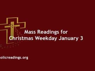 Catholic Mass Readings for Christmas Weekday January 3