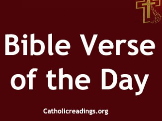 Catholic Bible Verse of the Day