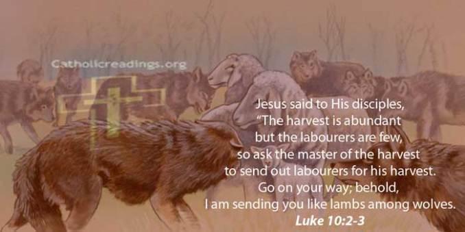 I Am Sending You Like Lambs Among Wolves - Luke 10:1-3- Bible Verse of the Day