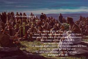Abandoned like sheep without a shepherd - Matthew 9:36-38 - Bible Verse of the Day