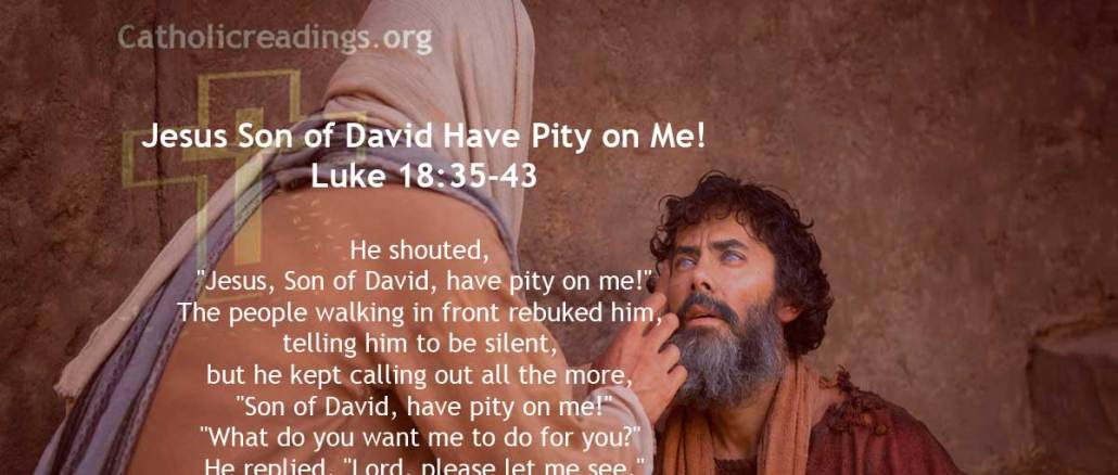 Jesus Heals Blind Bartimaeus, Jesus Son of David Have Pity on Me! - Mark 10:46-52, Luke 18:35-43 - Bible Verse of the Day