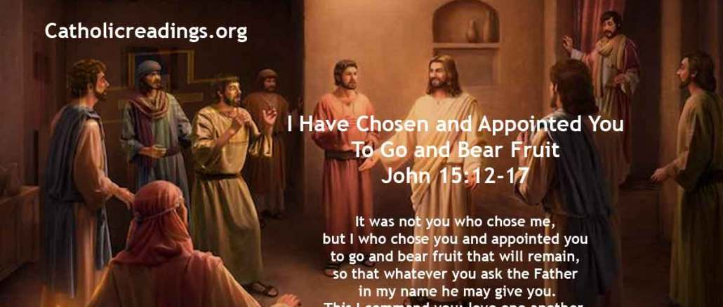 I Have Chosen and Appointed You To Go and Bear Fruit - John 15:12-17 - Bible Verse of the Day