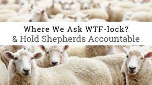 flock sheep symbolizes Catholics
