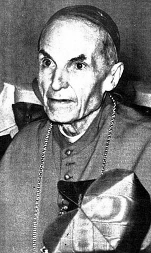 Venerable Elia dalla Costa