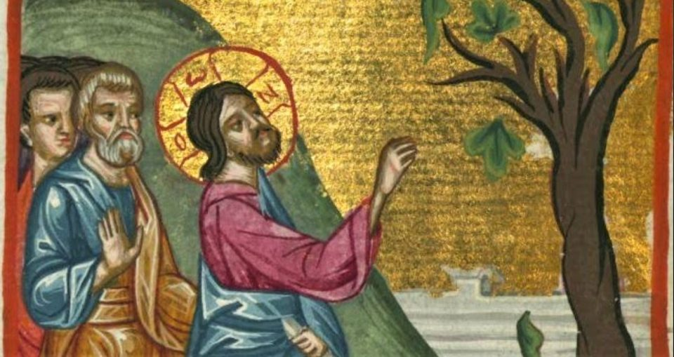 DAILY GOSPEL  COMMENTARY. THE PARABLE OF THE BARREN FIG TREE (Lk 13:1–9).