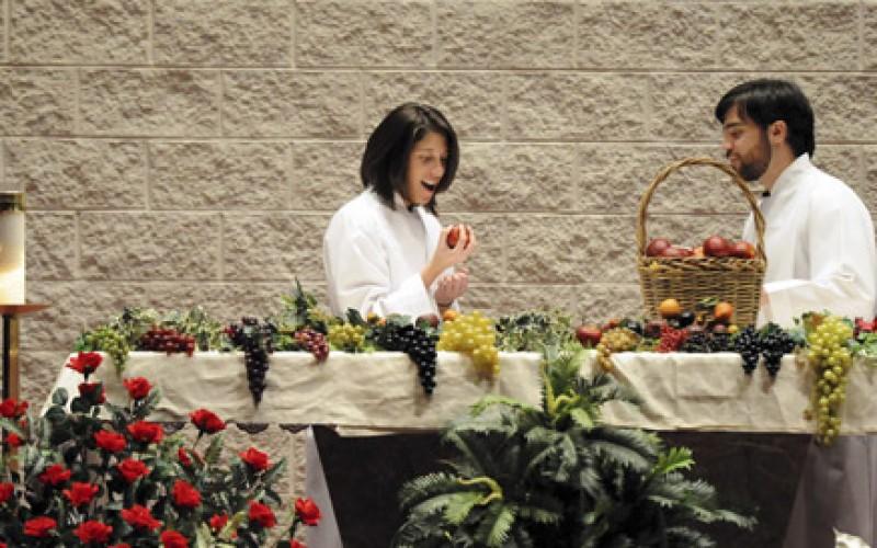 St Mary Mercy Employees