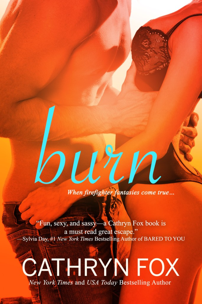 Book Cover: Burn (Book 4, Novella)