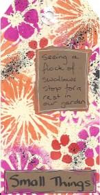 pac week 10 small things