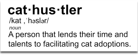 cat hustler definition