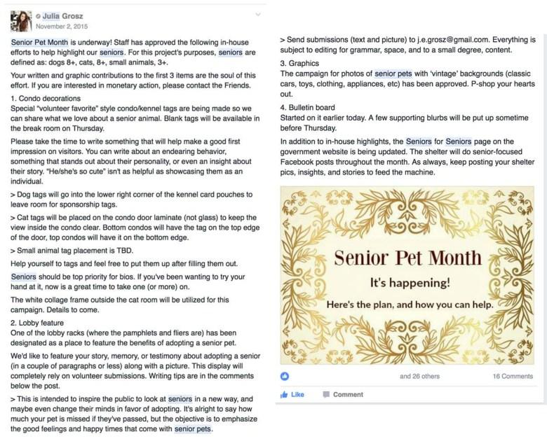 senior-pet-post