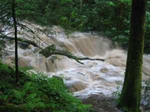 Cosby_Creek_TN_in_flood_7-18-2005