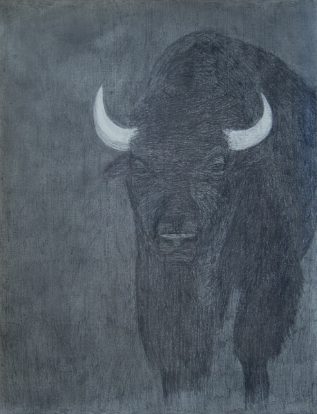 Bison - Cathy Durso