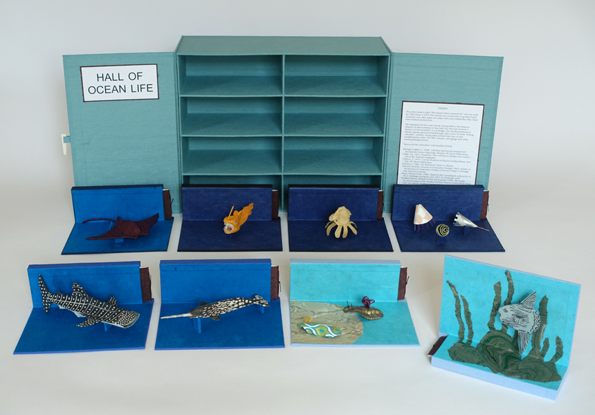 The Natural History Museum #2, an artist's book by Cathy Durso