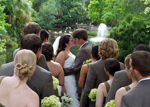 Zoo Wedding Recap :  wedding brown ch515 feather fern green hypericum berries lime publix recap wedding zoo 907942643 5rvqx M
