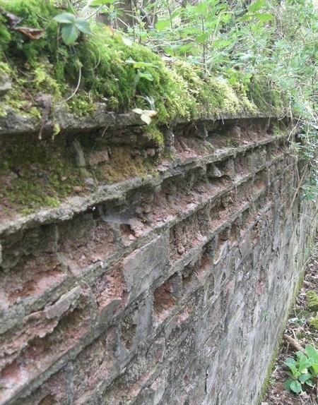 ©2010 - Cathy Read - Decaying brickwork texture - Digital image