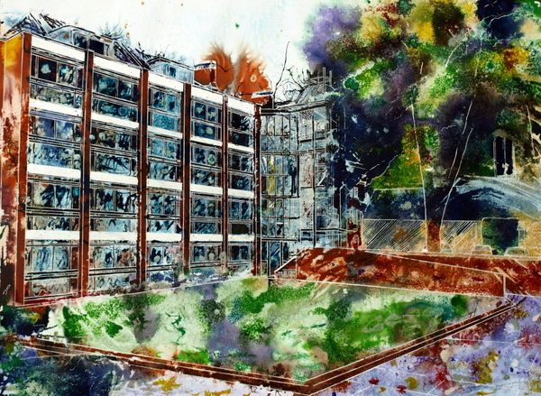 Painting of St Peter's College, Oxford - Chavasse Quad - ©2013 Cathy Read - Watercolour and Acrylic-55-x-75-cm - £1200