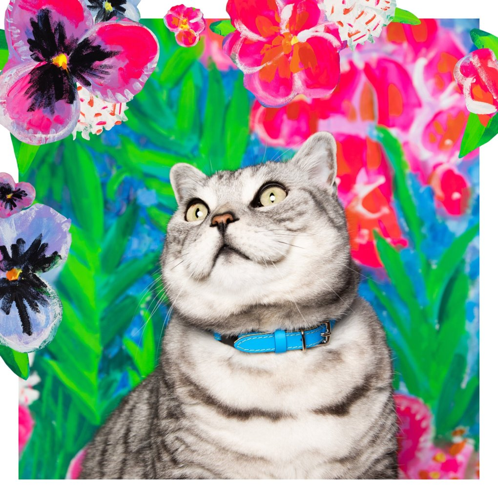 A cat sitting in front of a flower wallDescription automatically generated with low confidence