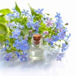 Oil & Flowers-Natural flea treatment