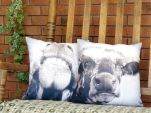 Rustic Cow Pillow Set